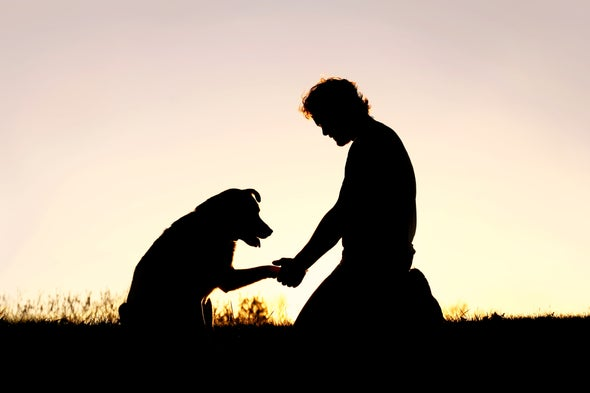 Why We Need to Take Pet Loss Seriously